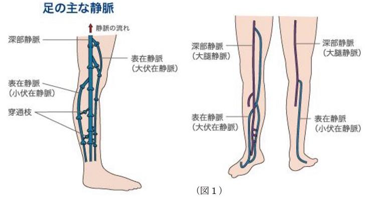 外科|診療科一覧|患者様へ|四国中央病院